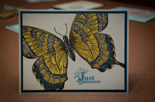 New Swallowtail Butterfly card by KJ Driscoll